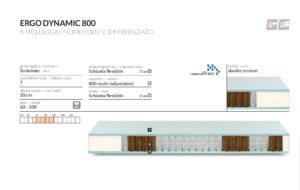 scheda tecnica Ergo Dynamic 800